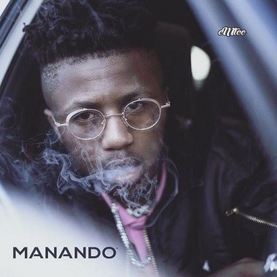 DOWNLOAD ALBUM: eMTee - Manando